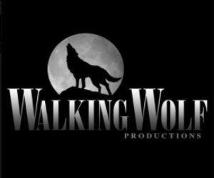 503db5d05f502-walking-wolf-productions-tv-launches-web-series-contest-1-276x274